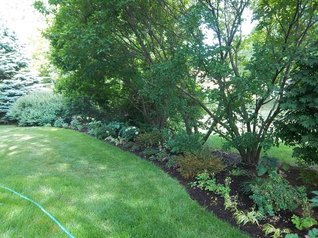 A Chicago Suburban Garden gets a remake traditional