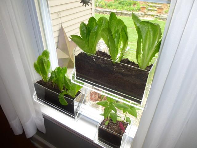 Living Ledge Specialty Vertical Garden Container