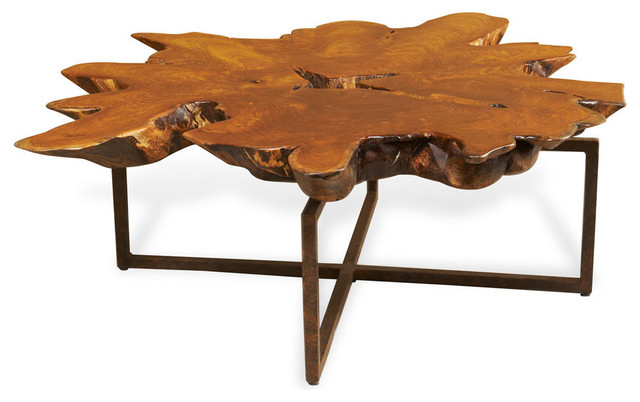 Harrer Rustic Lodge Teak Root Iron Abstract Coffee Table  : transitional coffee tables from www.houzz.com size 640 x 402 jpeg 51kB