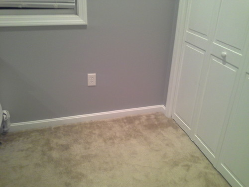 Which color carpet with gray walls bedroom for Colours that go with grey carpet