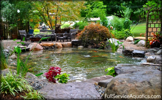 Koi pond water garden rustic newark by full service for Garden pond questions