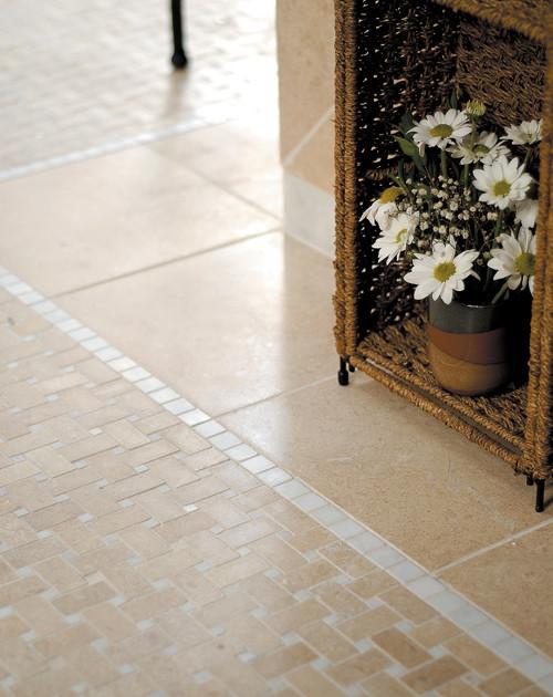 Harmony Limestone Collection: Seashell traditional-wall-and-floor-tile