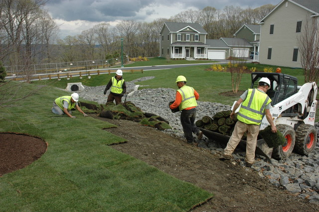 Sod at West Point traditional