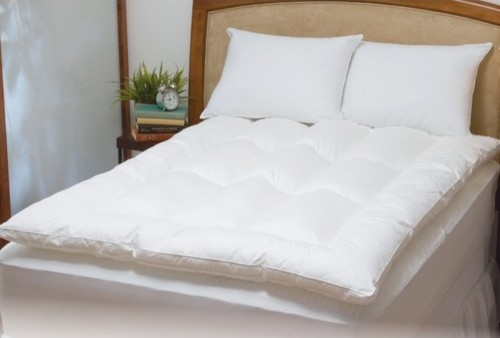 Feather Bed with Bonus Pillow modern-bed-pillows