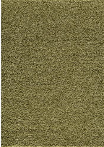 Vero Beach Lime Green Rug modern-rugs