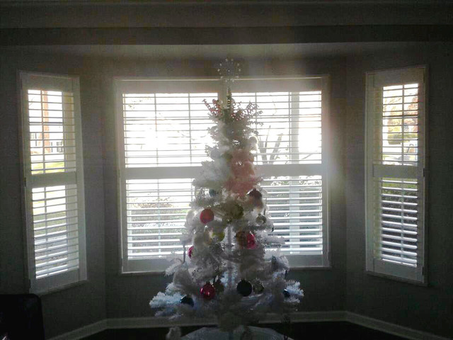 Plantation Shutters In Bay Window - traditional - window blinds ...
