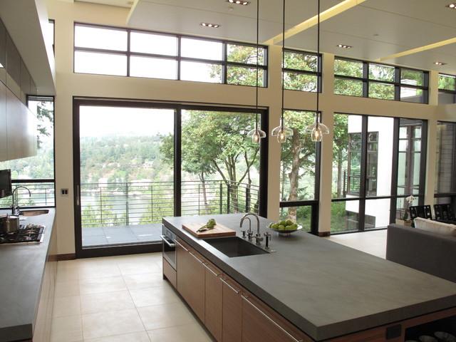 Quantum Windows & Doors   Reveal Architecture & Interiors contemporary-windows
