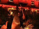 home design Bewitching Halloween Entryways by Houzzers (28 photos)