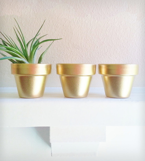 Gold Mini Planters Contemporary Indoor Pots And