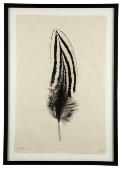 Feather Print #2 contemporary-prints-and-posters