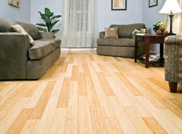 Morning star natural strand bamboo hardwood flooring for Morningstar wood flooring
