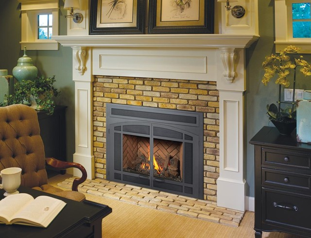 FPX DVL GreenSmart with Remote Gas Insert traditional-fireplaces