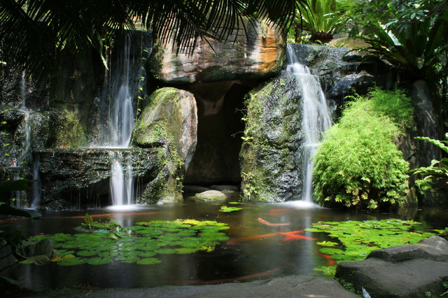 Hidden Waterfall With Pond Wall Mural Tropical