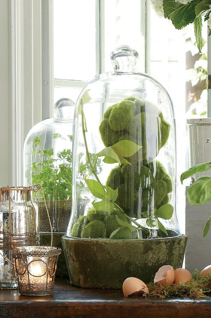 Aquitaine Bell Jars traditional-home-decor