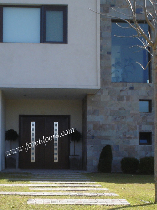 Modern front entry doors / contemporary front entry doors - Solid wood modern double front door with stainless steel inserts