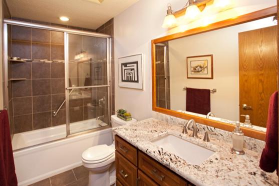 Burnsville Hallway Bathroom transitional