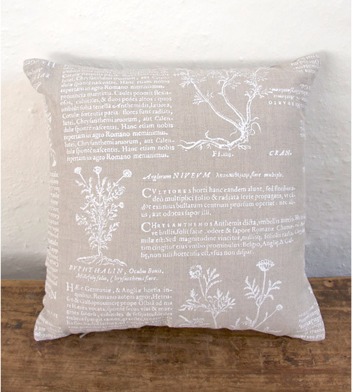 Latin Herbal Cushion traditional-decorative-pillows