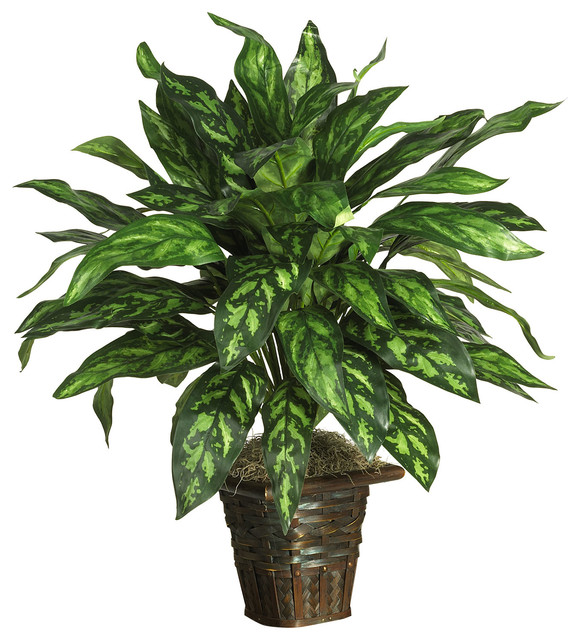 Nearly Natural Silver King with Basket Silk Plant traditional-artificial-flowers-plants-and-trees