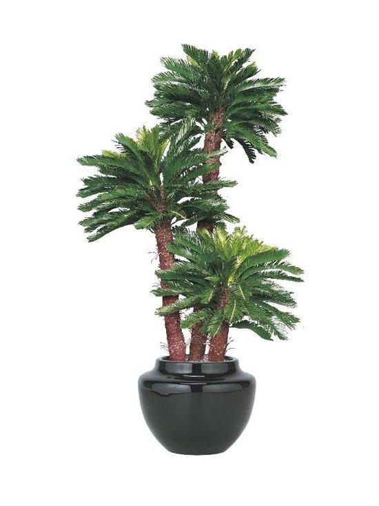 Artificial Outdoor King Sago Palm Tree - Artificial outdoor king sago palm tree is available up to 8' high.