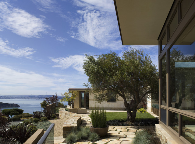 Tiburon Residence - with SF Bay view modern-landscape