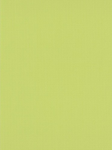 Green Urban Spirit Wallpaper - Double Roll contemporary-wallpaper