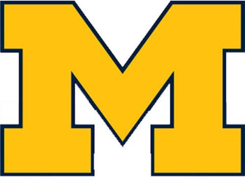 NCAA Michigan Wolverines College Logo Wallmarx Accent Decal ...