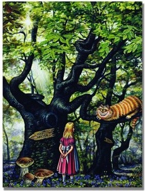 The Cheshire Cat 2000 Canvas Art by Jonathan Barry modern-artwork