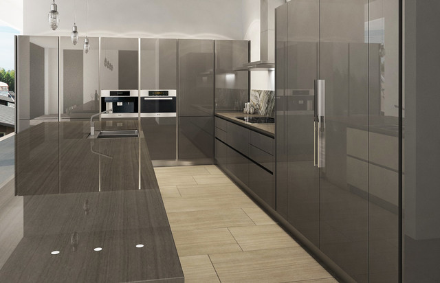 Contemporary Kitchen Cabinetry Vancouver By European Kitchen Art