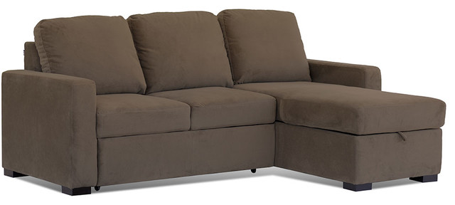 Lifestyle Solutions Chelsea Convertible Sofa in Mocha traditional-sofas