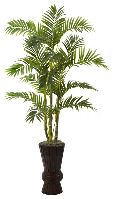 62in. Areca Tree with Decorative Planter contemporary-plants