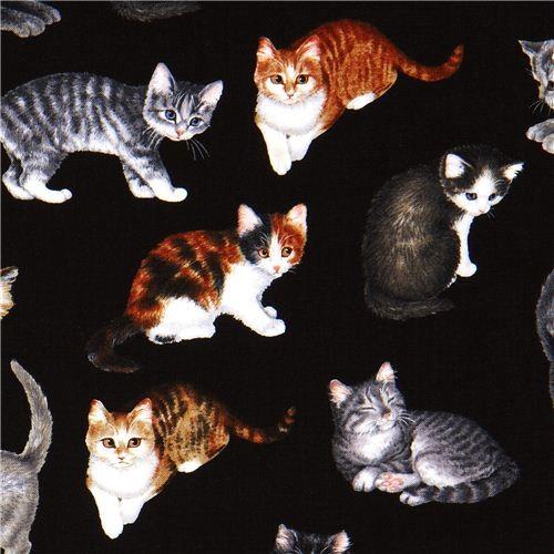 black Timeless Treasures fabric cat USA fabric