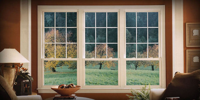 Window Ideas traditional