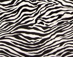 black-white Michael Miller premium laminate fabric zebra  fabric