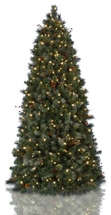 Balsam Hill Frosted Woodland Pine Pull-Up Artificial Christmas Tree traditional-christmas-trees