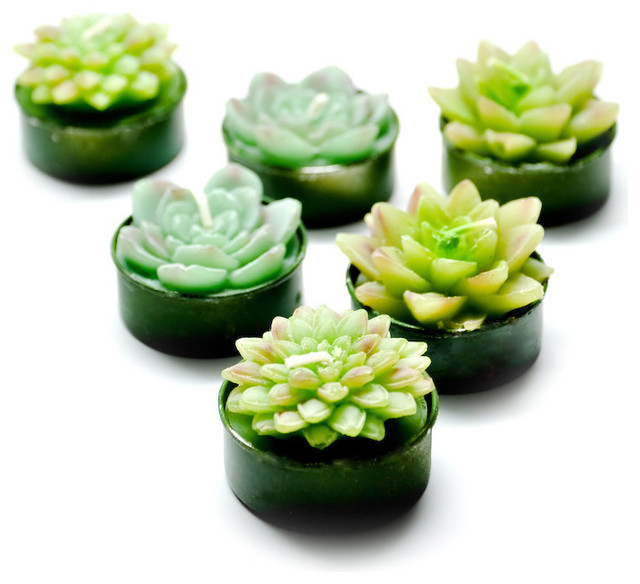 Succulent Tealight Set eclectic candles and candle holders