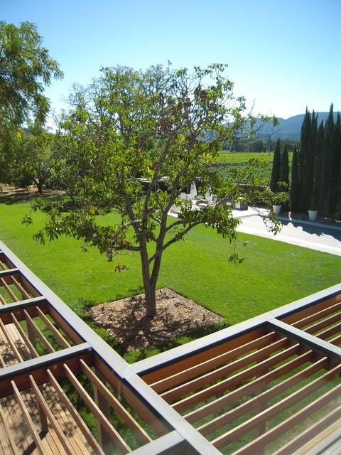 Wine Country Modern modern-landscape