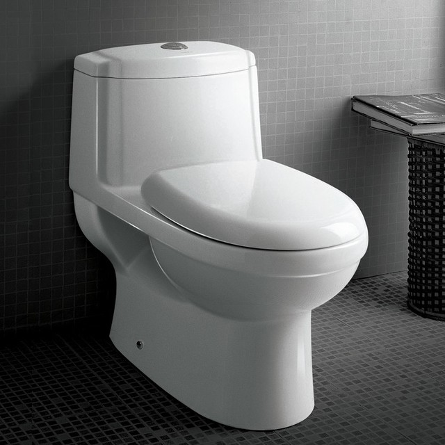 Ariel Platinum Contemporary European Toilet Tb222m Modern Toilets New York By Exotic