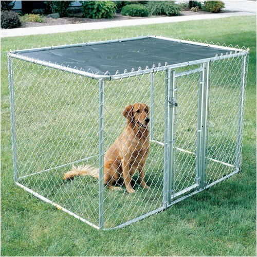 Chain Link Portable Dog Kennel Modern Kennels And