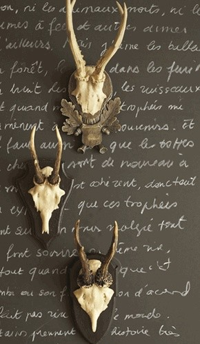 Hunt Club Antler Trophy Reproductions Set by Two's Company® eclectic-home-decor