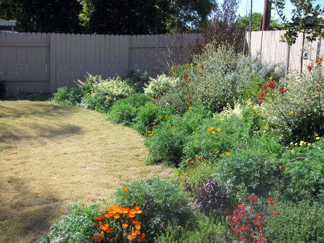 Fullerton ca lawn to california native design project for California native landscape design