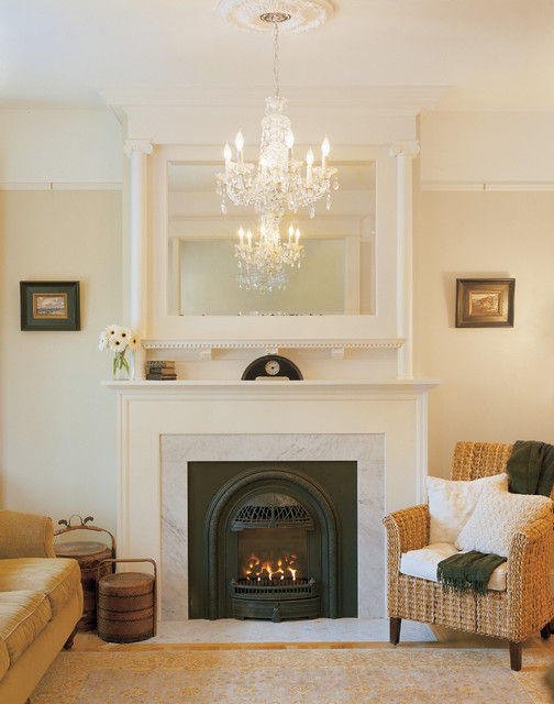 Portrait Series Fireplaces traditional