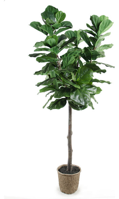 Fiddle Leaf Fig Tree Contemporary Artificial Plants