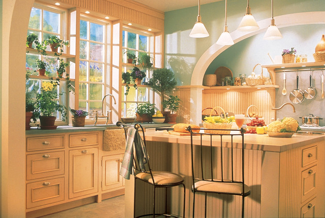 Traditional Kitchen Gallery traditional-kitchen