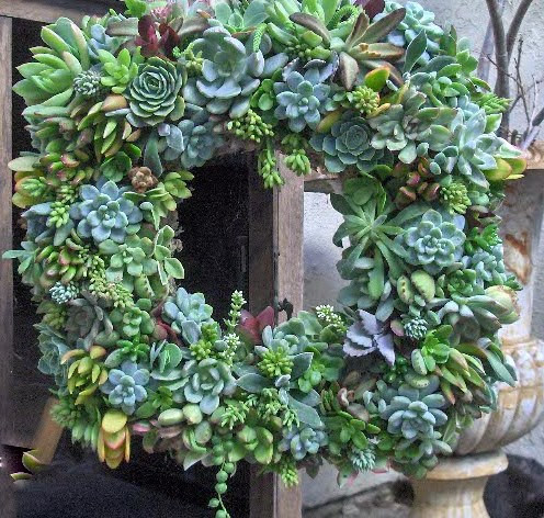 Holiday Succulent Wreath Autumn Wreath by The Little Succulent Shoppe modern-outdoor-decor