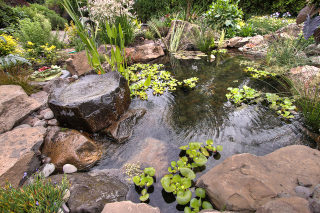 Natural pond traditional portland by paradise for Plants for around garden ponds