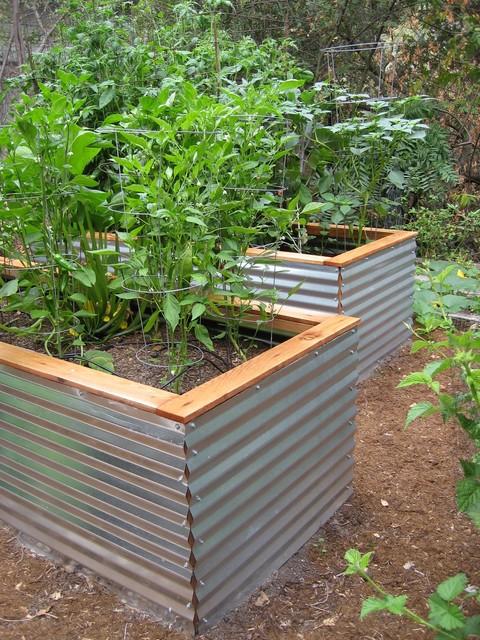 Raised Garden Beds Contemporary San Francisco By