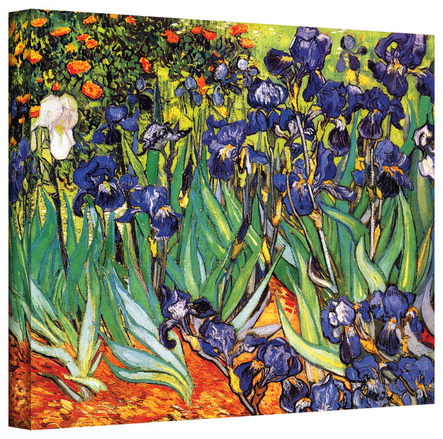 Vincent VanGogh 'Irises in the Garden' Wrapped Canvas Art contemporary-artwork