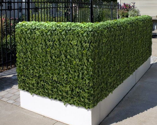 Artificial Outdoor Ivy Hedge - Artificial outdoor ivy hedge.