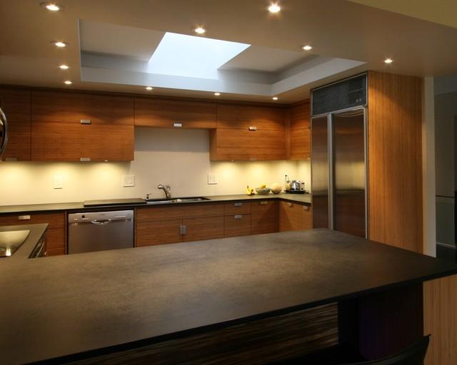 Custom Cabinets contemporary-kitchen