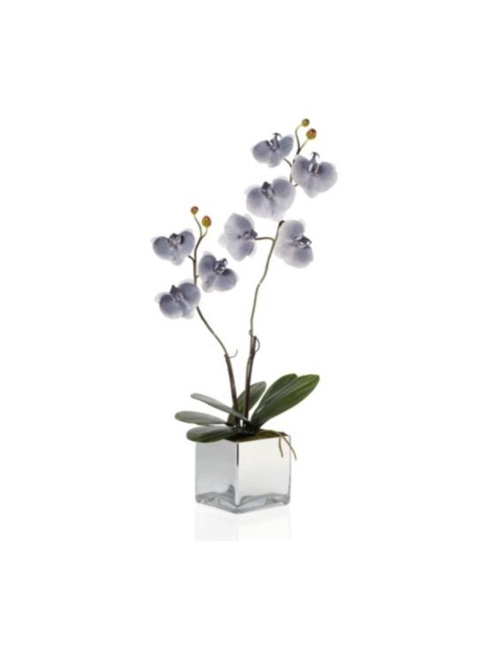 Z Gallerie - Phalaenopsis Potted Plant - This extremely authentic looking bloomright down to the delicate and fluttering petals and lush green stems and leavesis perfectly displayed in asilver resin planter. Conditions are ideal anywhere in your home to cultivate this freshgrey orchid.